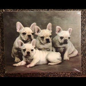 French Bulldog Canvas